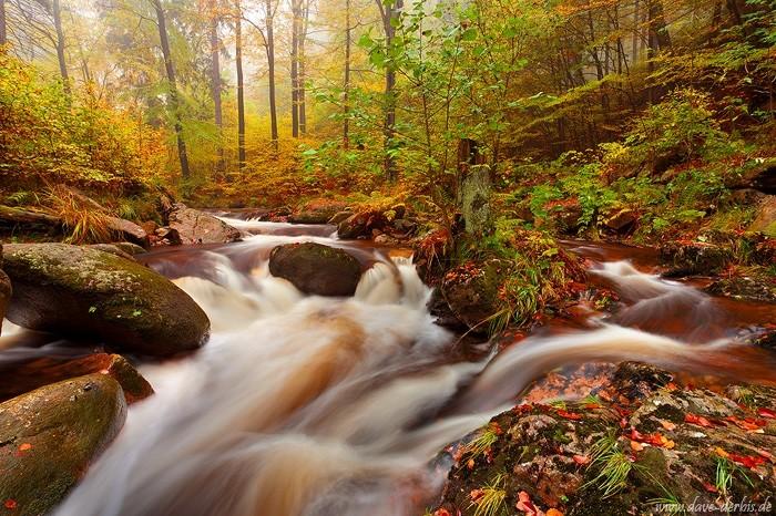 Herbst im Ilsetal im Harz