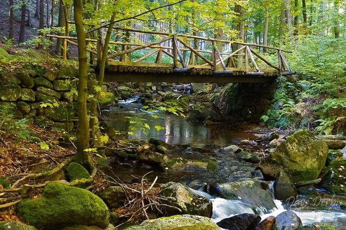 Ilsetal Brücke aus Holz