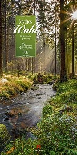 Mythos Wald Coverfoto