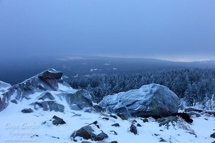 Aussicht über den Harz