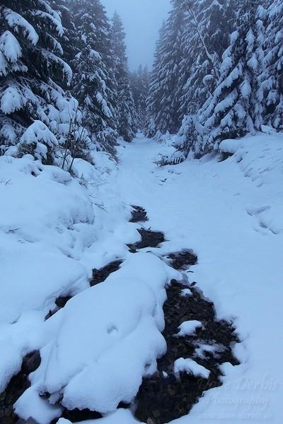 Winterwanderung Wolfswarte - Rückweg