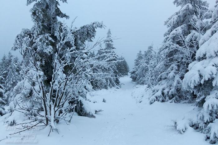 Der zum Gipfel im Winter