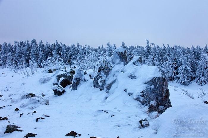 Klippen und Wald im Harz