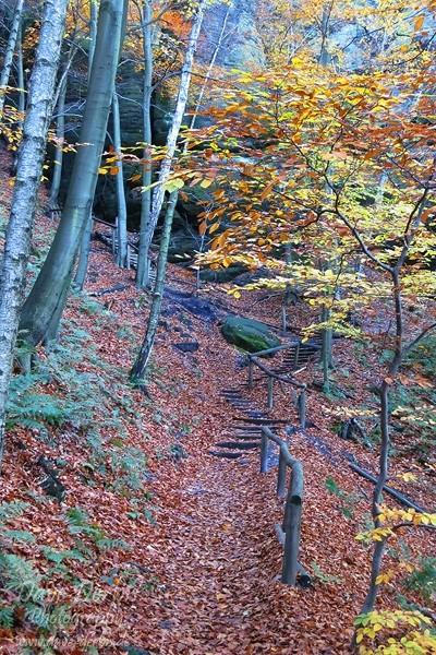 Schrammsteine Wandern - Treppe
