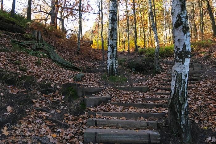 Schrammsteine Wandern - Die letzten Stufen