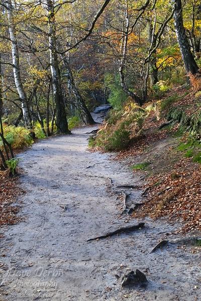 Schrammsteine Wandern - Auf den Schrammsteinen
