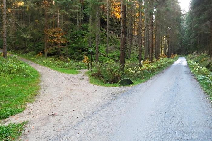 Schrammsteine Wandern - Abzweig Wilde Hölle