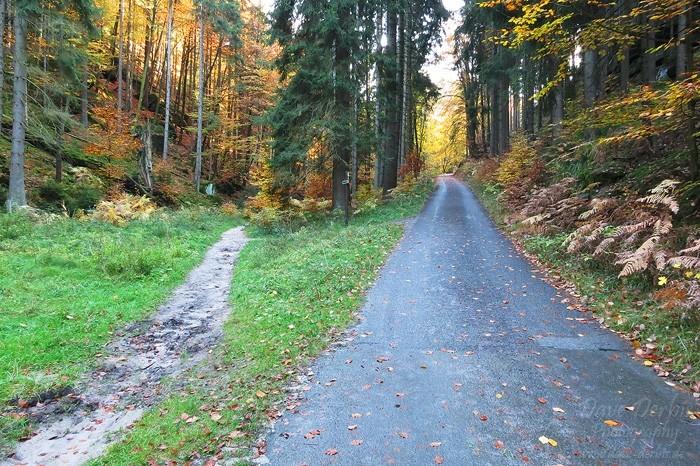 Schrammsteine Wandern - Weiter Bergauf