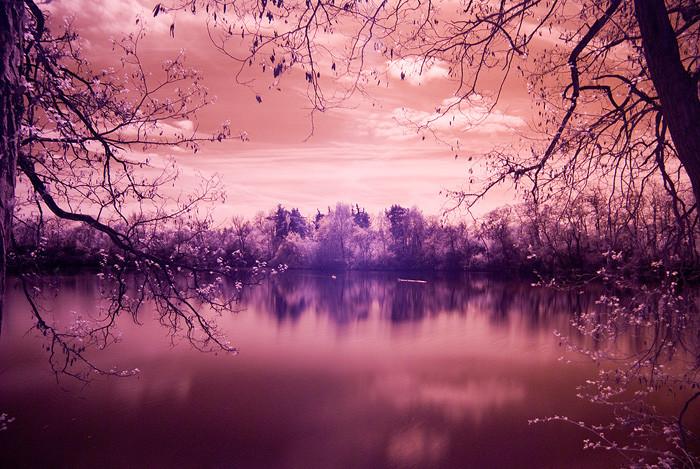 Unbearbeitetes Roh Bild mit montiertem Infrarot Filter