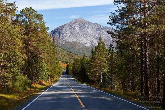 Straße durch die Wildnis Norwegens