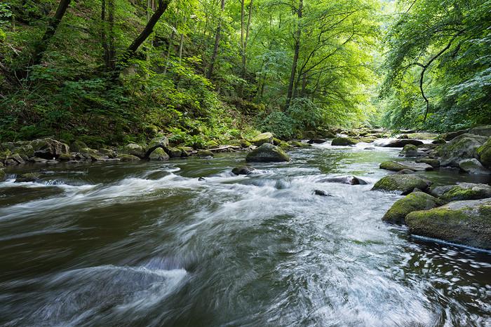Objektiv Vergleich 16-35mm vs 14-24mm Beispielbild Tal mit Fluss und Wald
