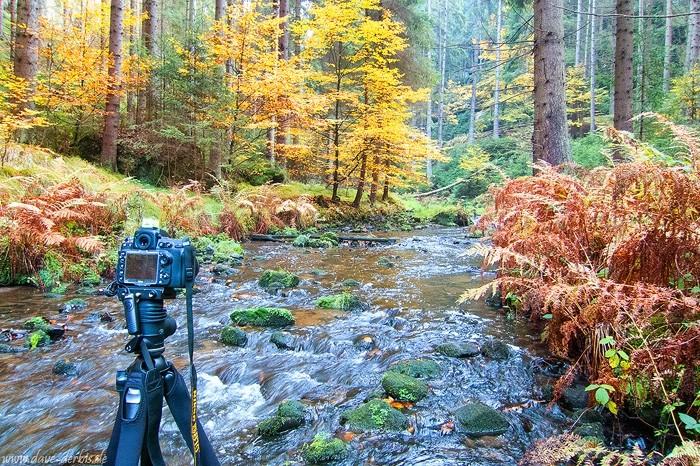 Fotografieren in der Böhmischen Schweiz mit Weitwinkel Objektiv
